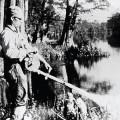 ℹ️ DDT - insecticid anti-malarie, util în agricultura de după cel de-Al Doilea Război Mondial